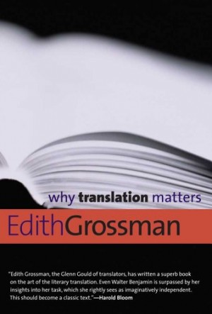 Why-Translation-Matters-Why-X-Matters-Series-0
